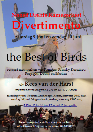 the best of birds flyer